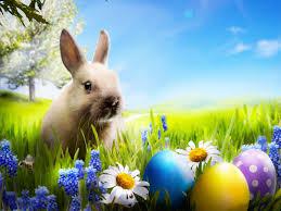 Húsvéti pihenés Siófokon